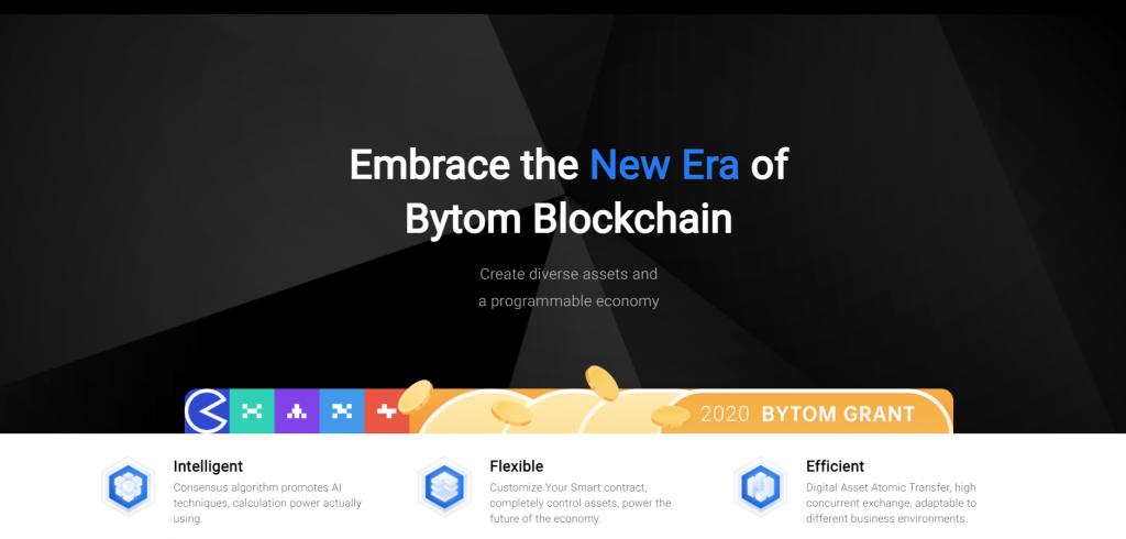 Bytom Review, Bytom Company