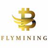 FLYMINING Image